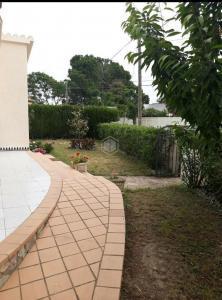 322586 ECB 818 Olot 58 / Emporda 27 Casa / Xalet  Sant Pere Pescador