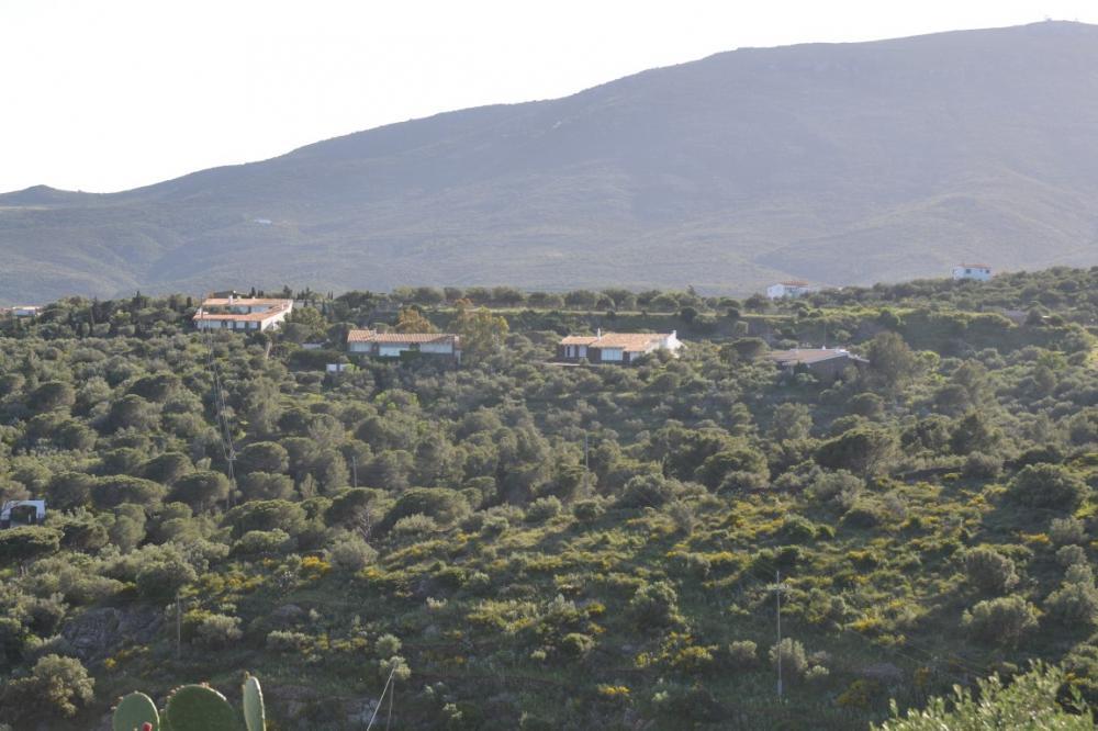 Parcela de 9.500 m² en S'Alqueria con vistas al mar en Cadaqués