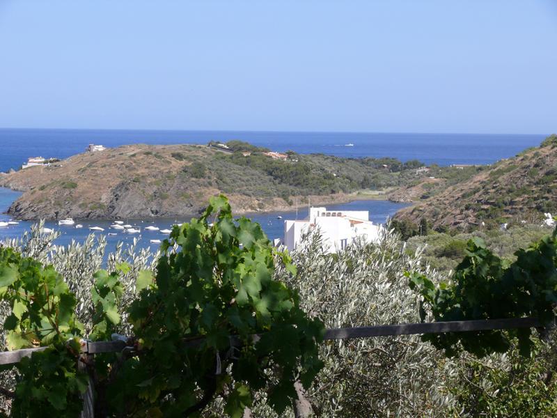 Casa con dos dormitorios en la Carretera Cap de Creus y terraza con grandes vistas