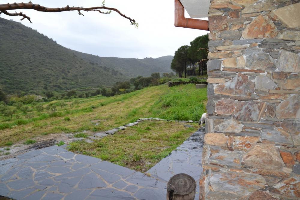 Olivar Selva de Mar Olivar con casa Rústic Carretera Cadaqués Cadaqués