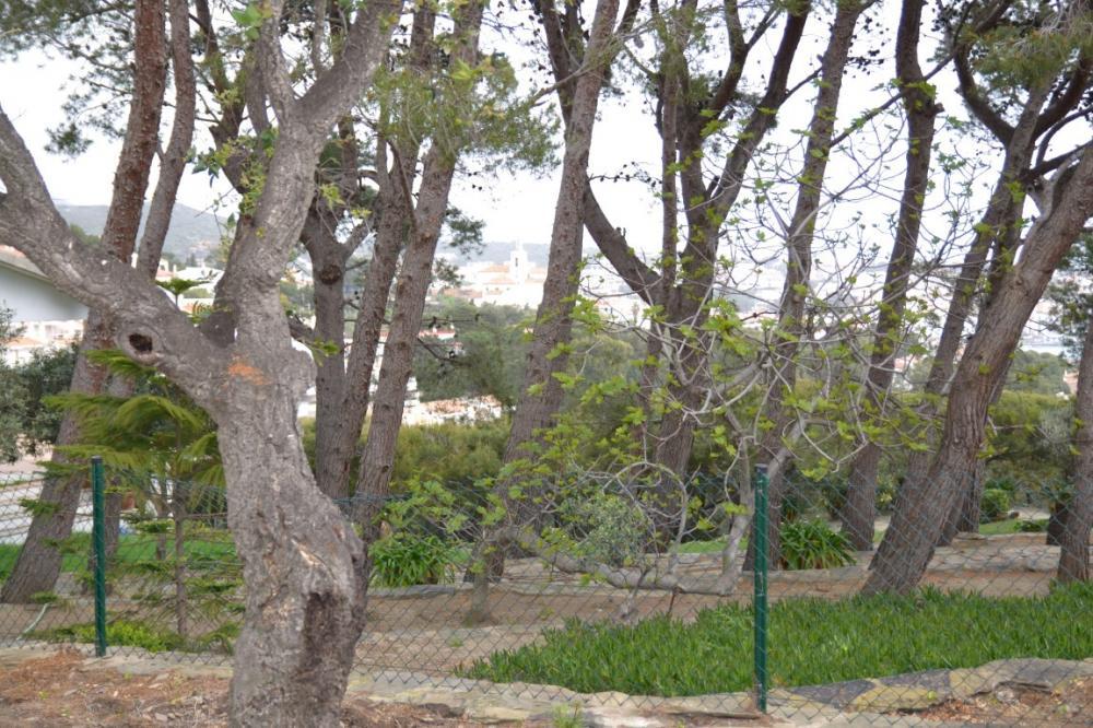 PUJADA DE SANT SEBASTIÀ Parcela situada en la zona tranquila Rec de Palau - Llane, con vista al mar. Terrain Rec De Palau - Llane Cadaqués