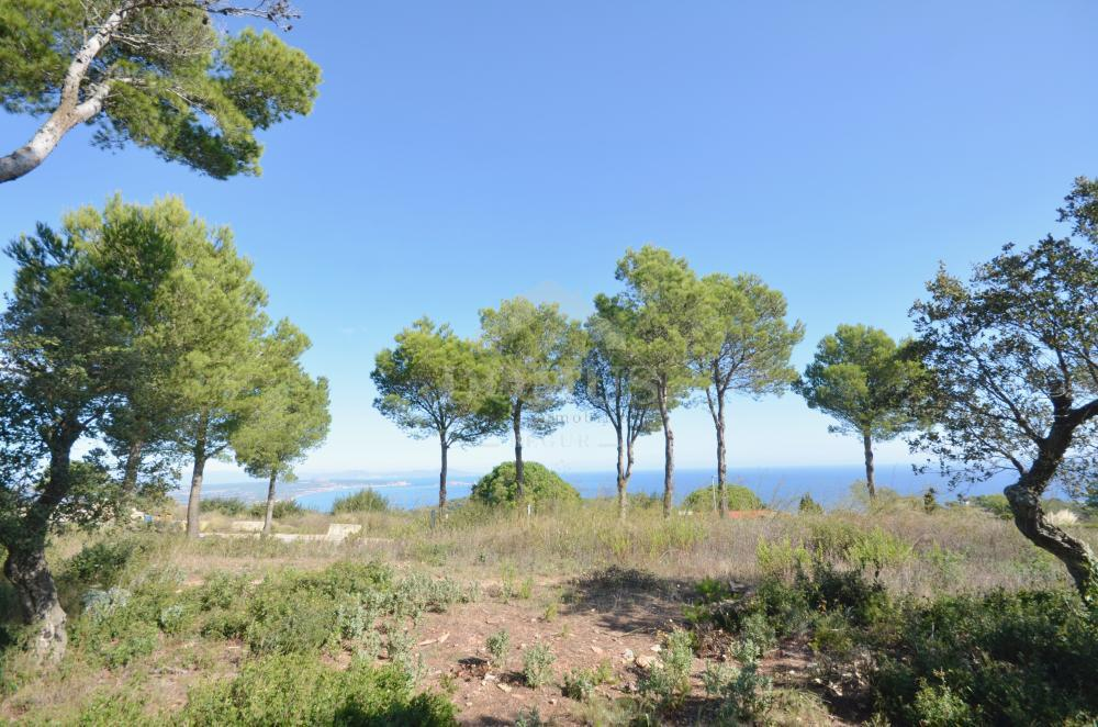 991 SON RICH, 1 Building plot Centre Begur