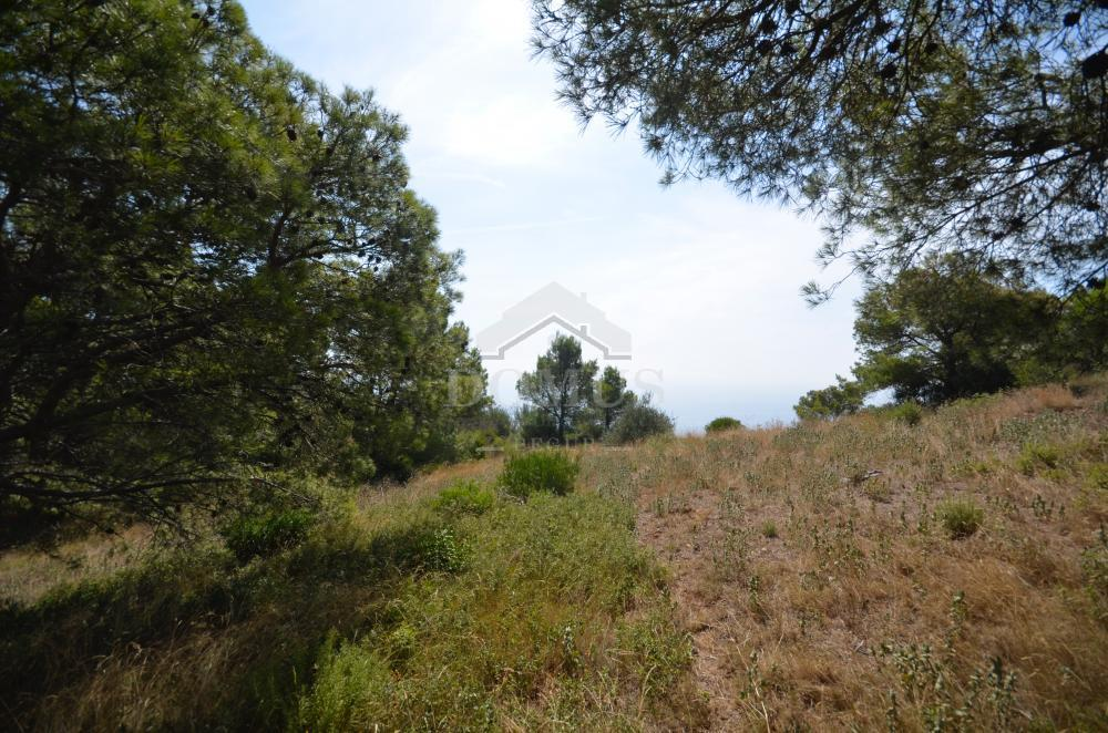 914 Les Magnolies IV Terrain Begur Begur