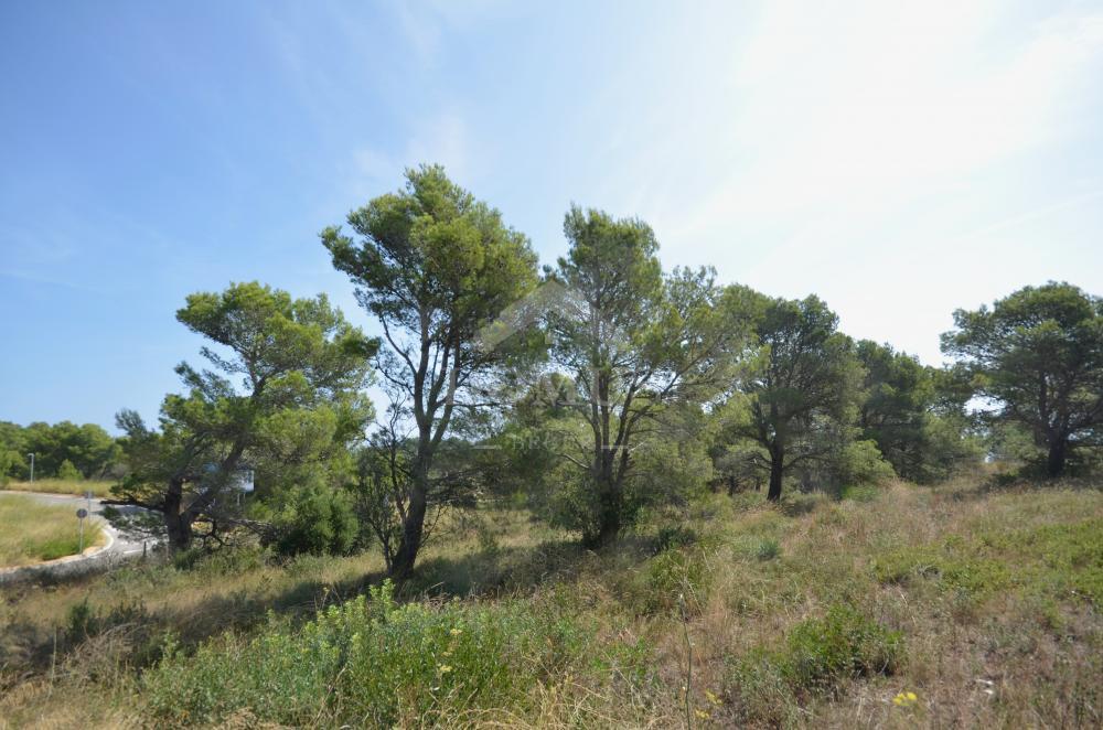 1166 Les Magnolies VI Bouwgrond Begur Begur