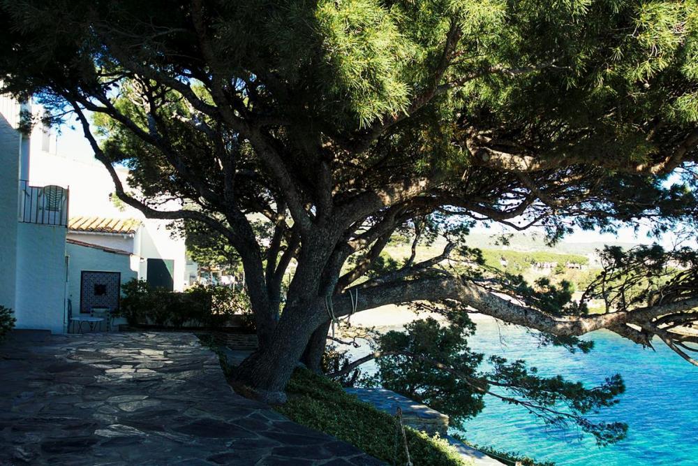 EP-19024 Casa idílica sobre el mar Villa privée / Villa  Cadaqués