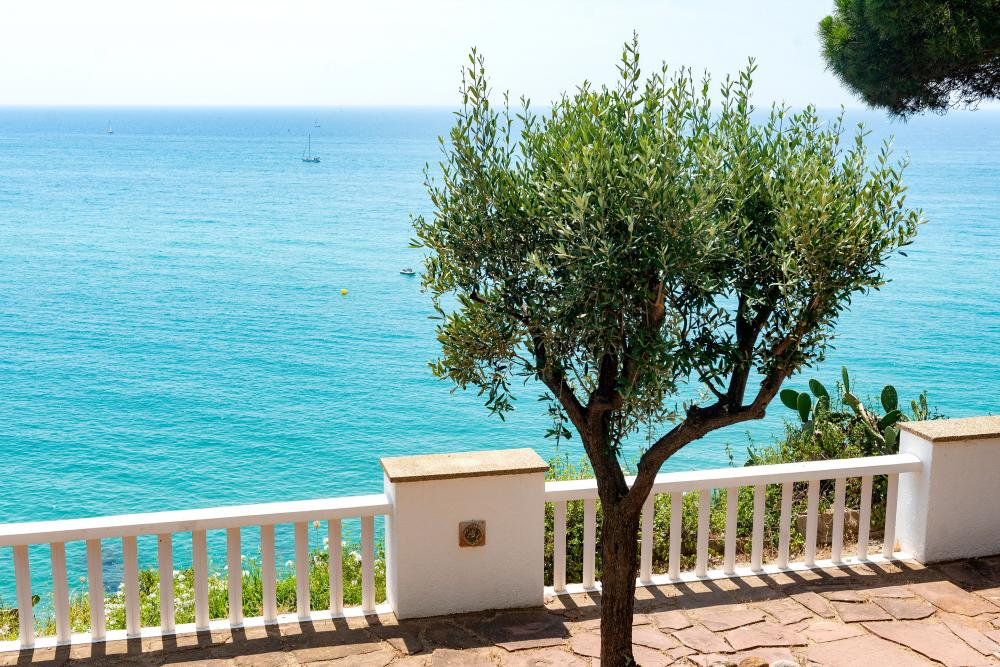 Views of the sea, the beach, the mountains and the gardens
